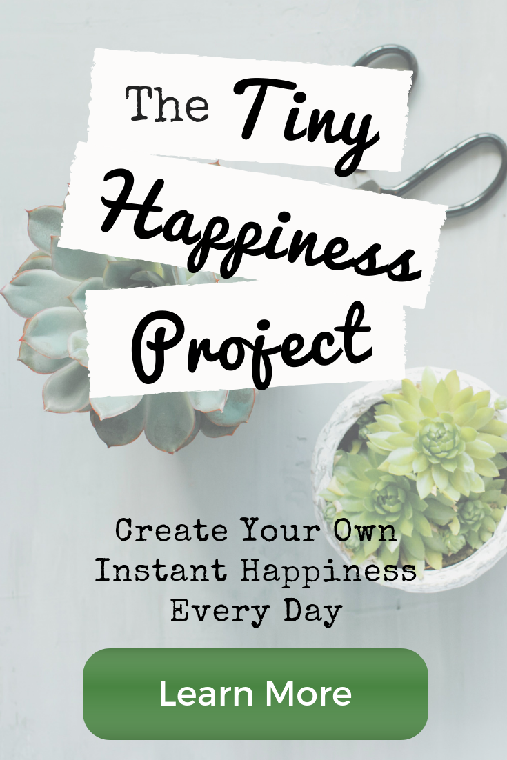 the tiny happiness project