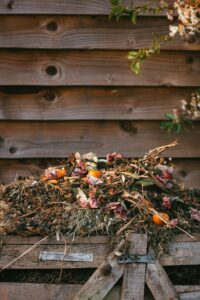 A Compost Pile Of Leaves and Dead Vegetative Matter